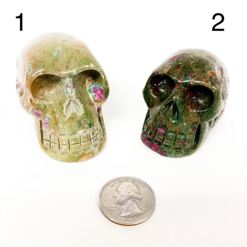 Ruby in Fuchsite Skulls with Quarter for scale