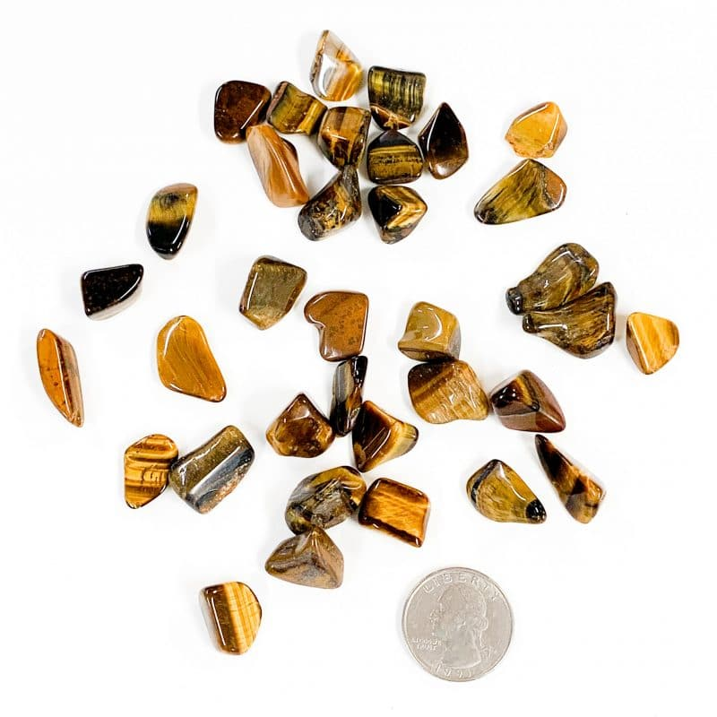 Gold Tiger's Eye Tumbled with Quarter for Scale