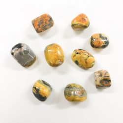 Bumble Bee Agate Tumbled Stone
