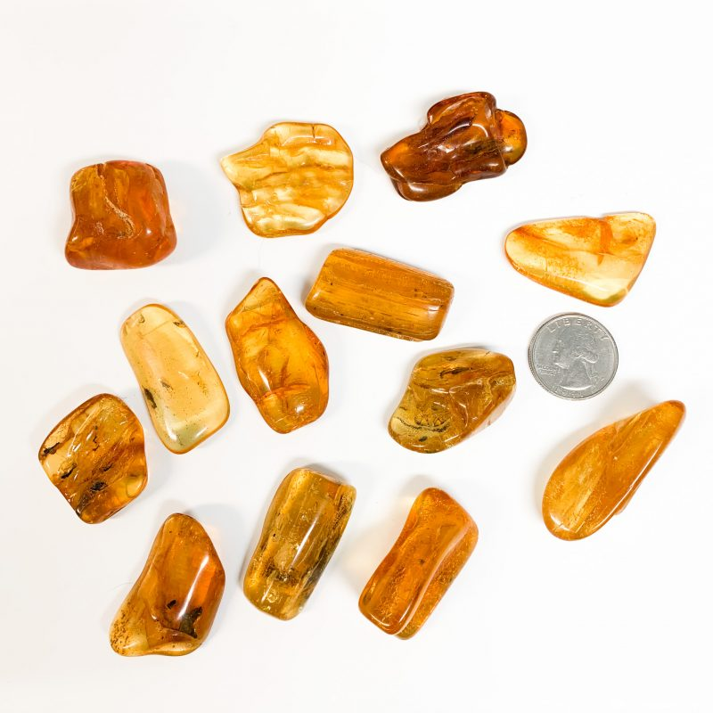 Amber Pieces with Quarter for Scale