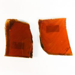 Amber Slices
