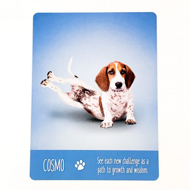 Yoga Dogs Card 2