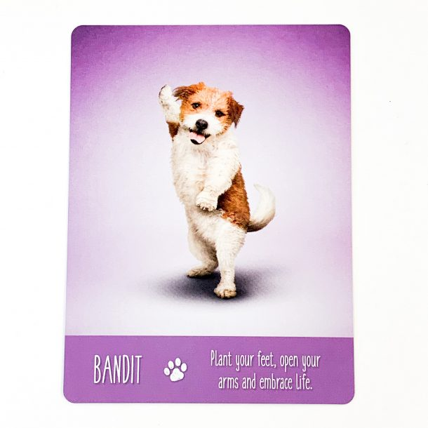 Yoga Dogs Card 3