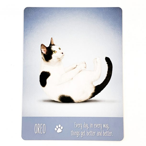Yoga Cats Card 1