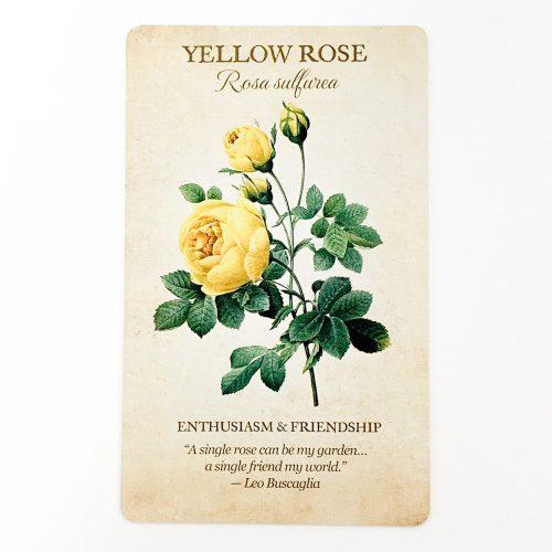 Botanical Inspirations Card 2