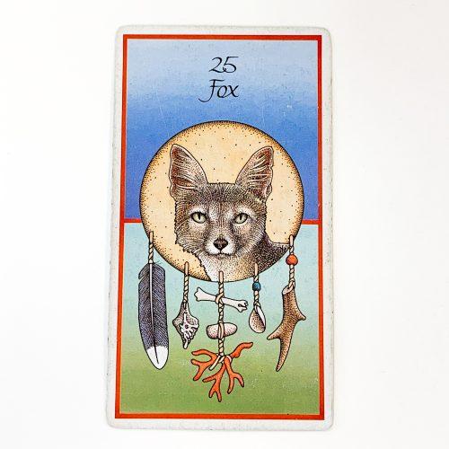 Medicine Cards Card 1
