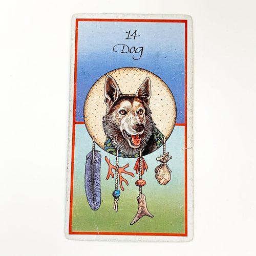 Medicine Cards Card 2