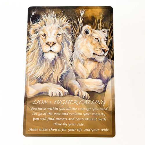 Spirit of the Animals Oracle card 3