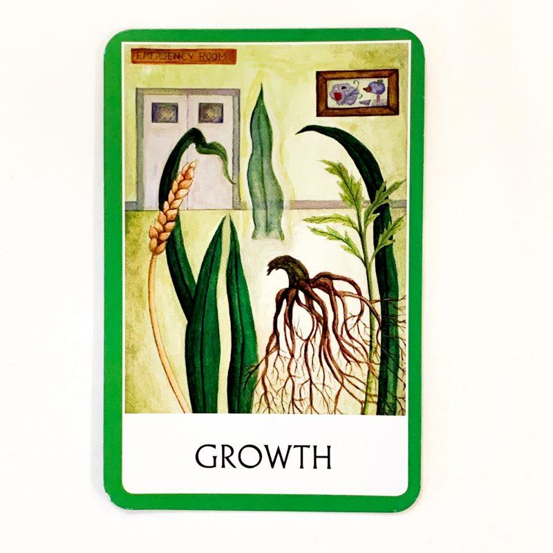 Chakra Wisdom Oracle Card 1