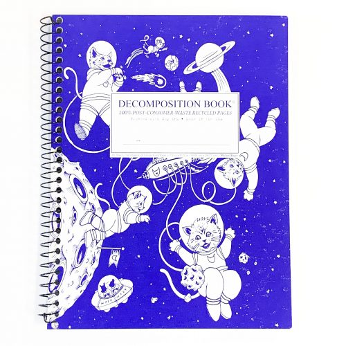 Decomposition Notebook - Space Cat