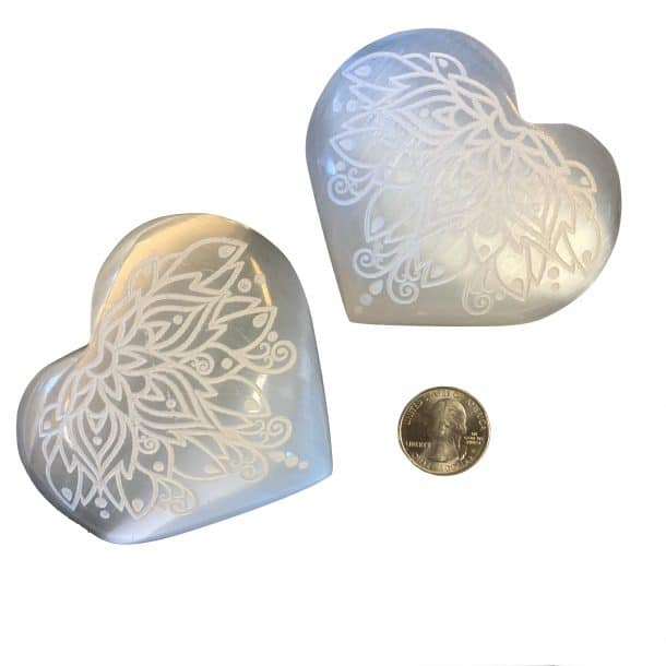 Selenite Hearts with Lotus Carving with Quarter for Scale