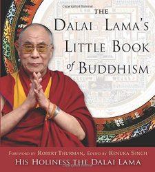 Dalai Lama's Little Book of Buddhism