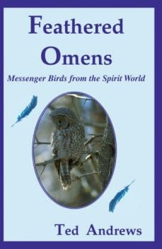 Feathered Omens messenger birds from the spirit world