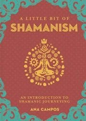A little Bit of Shamanism book