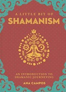 A little Bit of Shamanism book