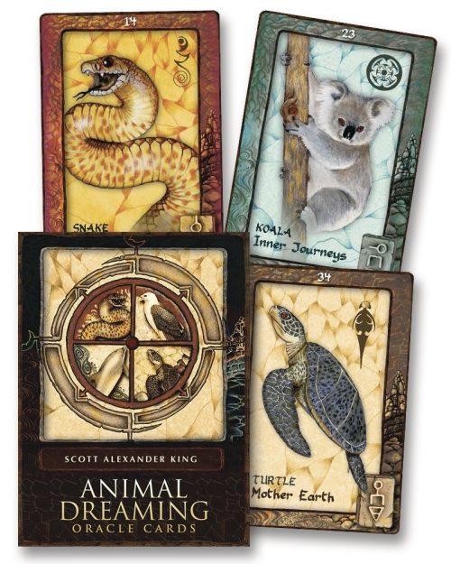 Animal Dreaming Oracle 9780738742403