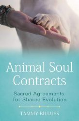 Animal Soul Contracts cover