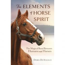 Elements of Horse Spirit