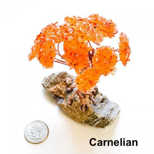 Gemstone Tree - Carnelian with Quarter
