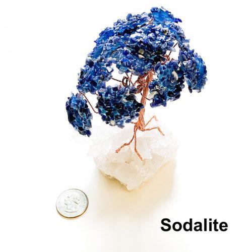 Gemstone Tree - Sodalite with Quarter
