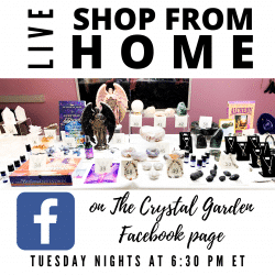 Facebook Live Shop from Home