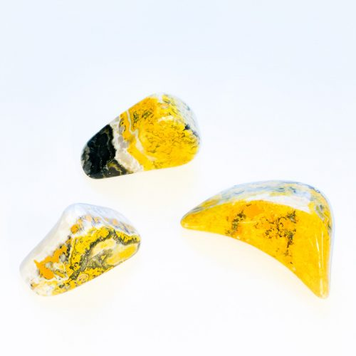 Bumble Bee Jasper Free Form Pieces