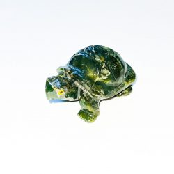 Serpentine Turtle