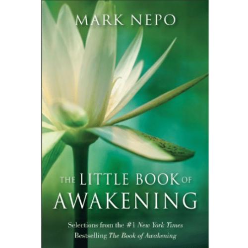 Little Book of Awakening