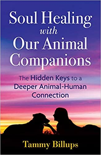 animal soul healing